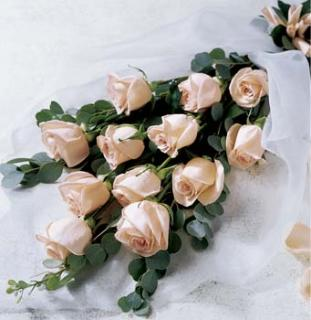 Roses - Wrapped 1 dozen