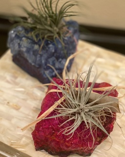 Geode Airplant